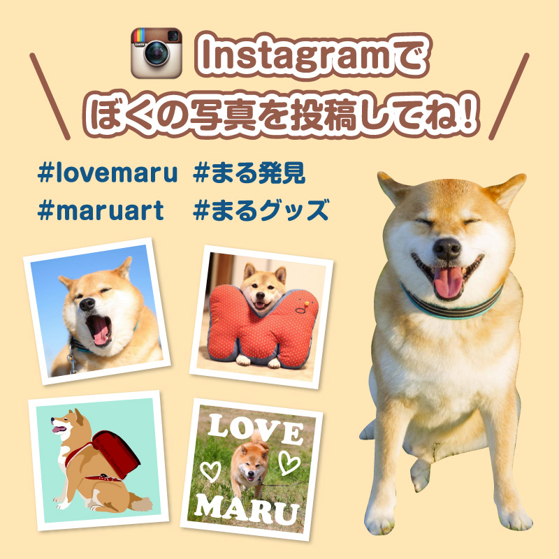 maru_top_150920.jpg